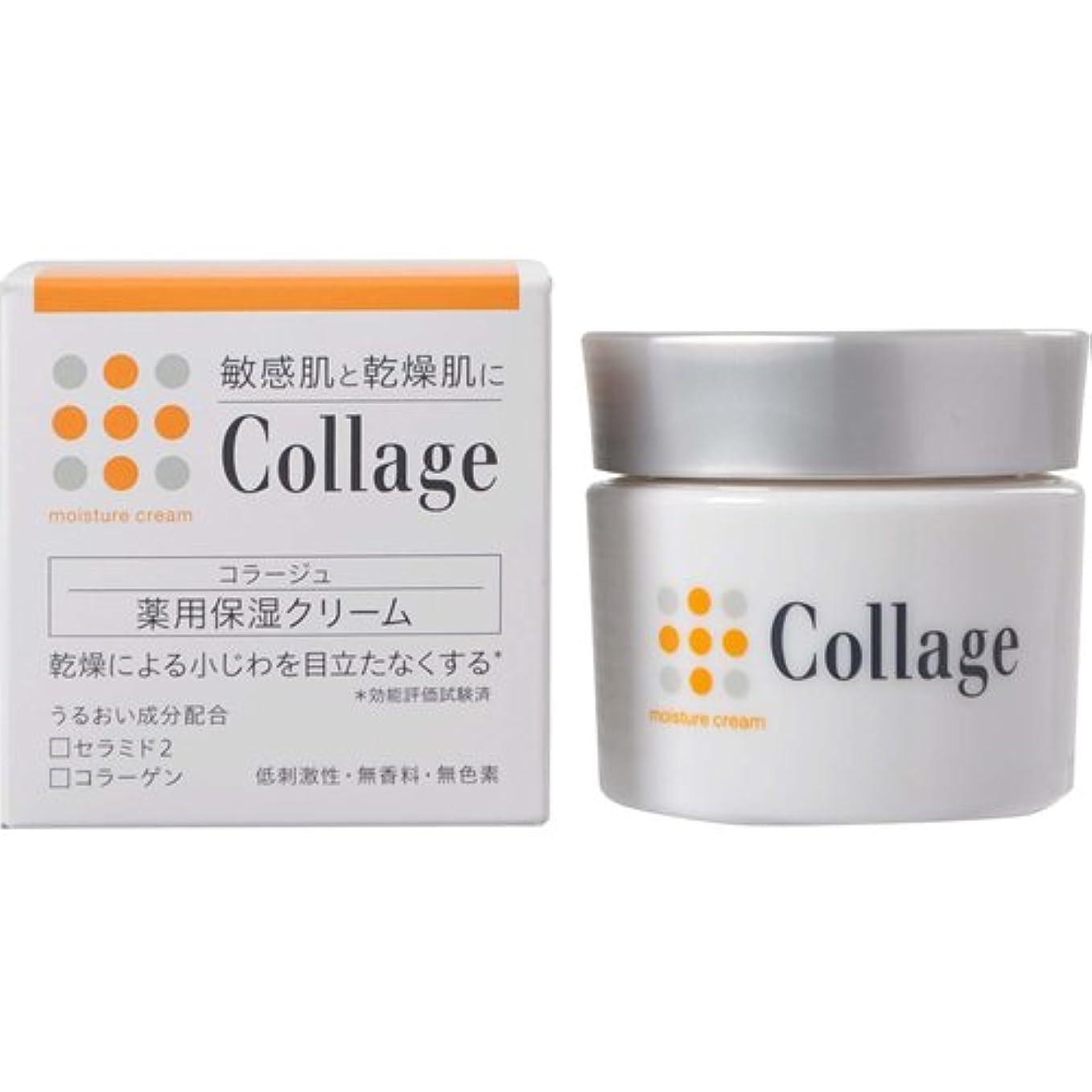 城バルブ雑多なコラージュ 薬用保湿クリーム 30g 【医薬部外品】
