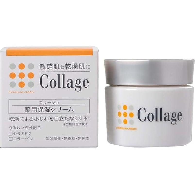 実現可能性論理的ジムコラージュ 薬用保湿クリーム 30g 【医薬部外品】