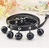 Dog Cat Collar with Big Bell, Cat PU Collar Leash for Small Dog Kitten