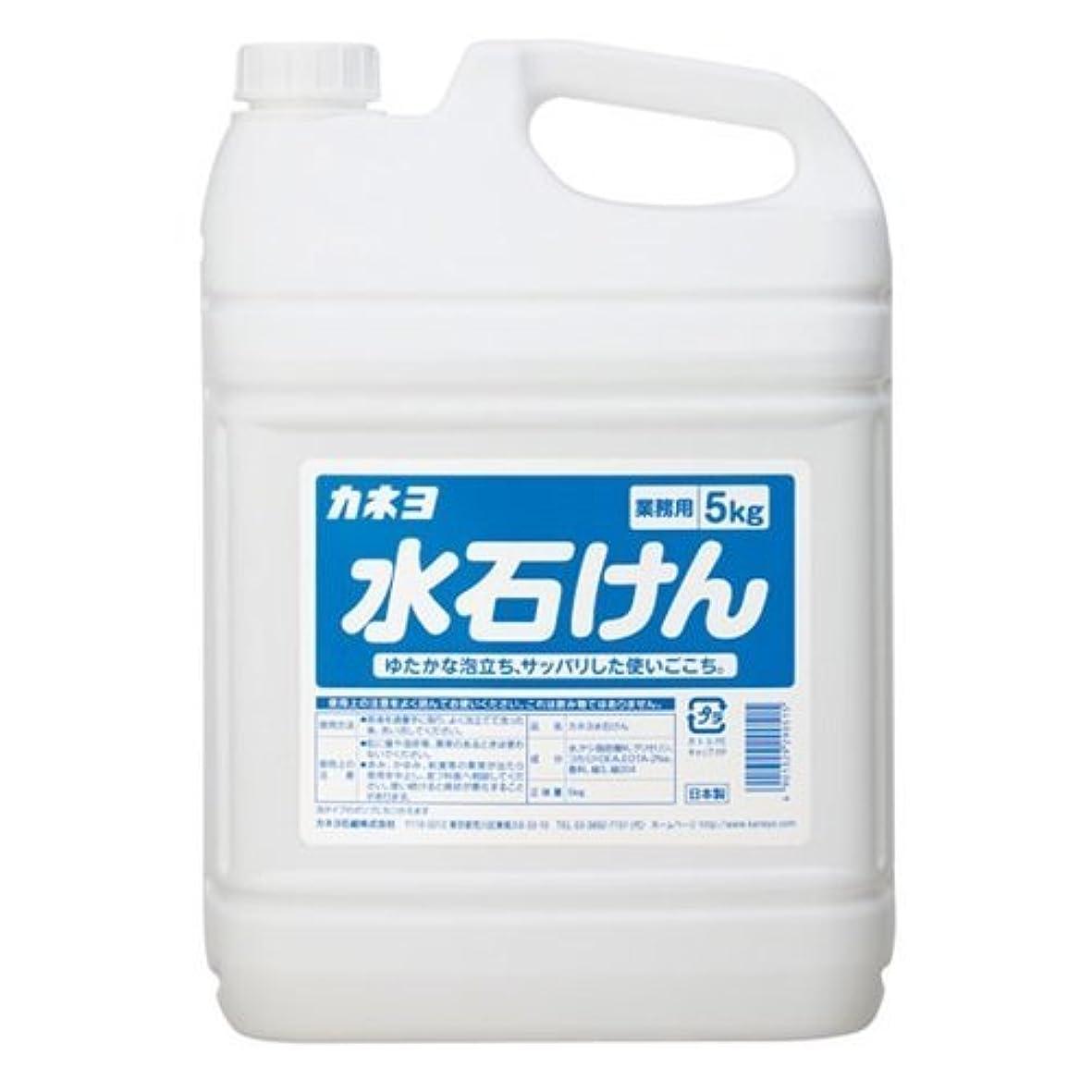 禁じるブラウン雑種【ケース販売】業務用 カネヨ水石けん 5㎏×3本