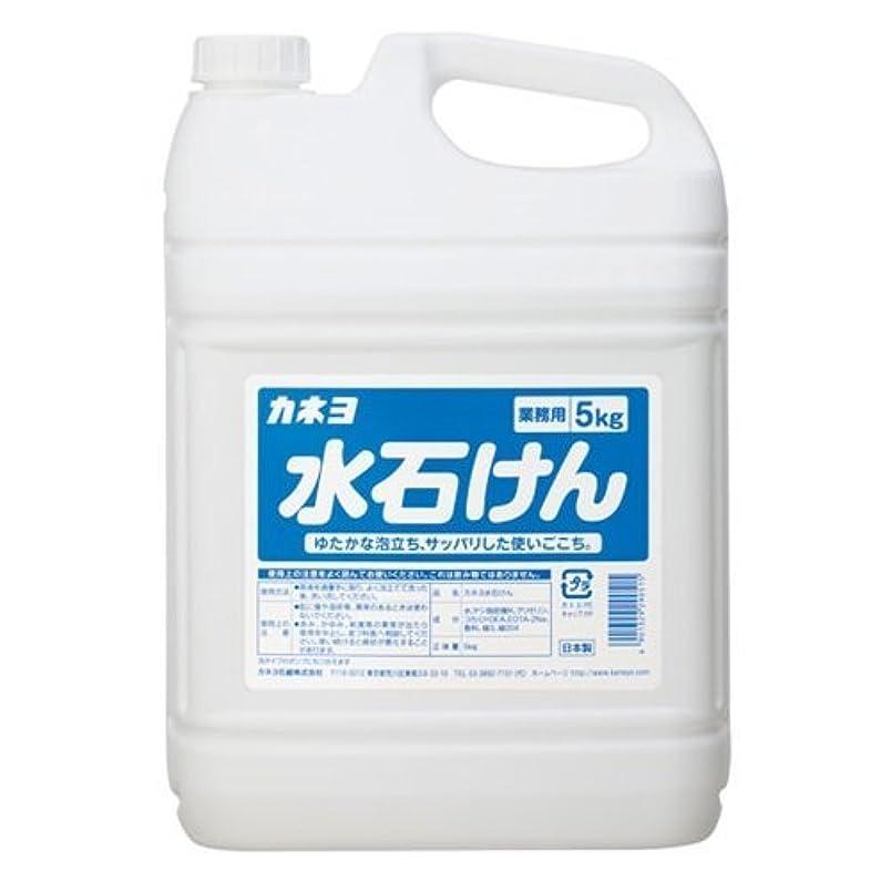ストレッチ砂利出席する【ケース販売】業務用 カネヨ水石けん 5㎏×3本