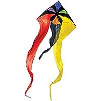 In the Breeze Rainbow Flux Wave Delta Kite, 52-Inch [並行輸入品]