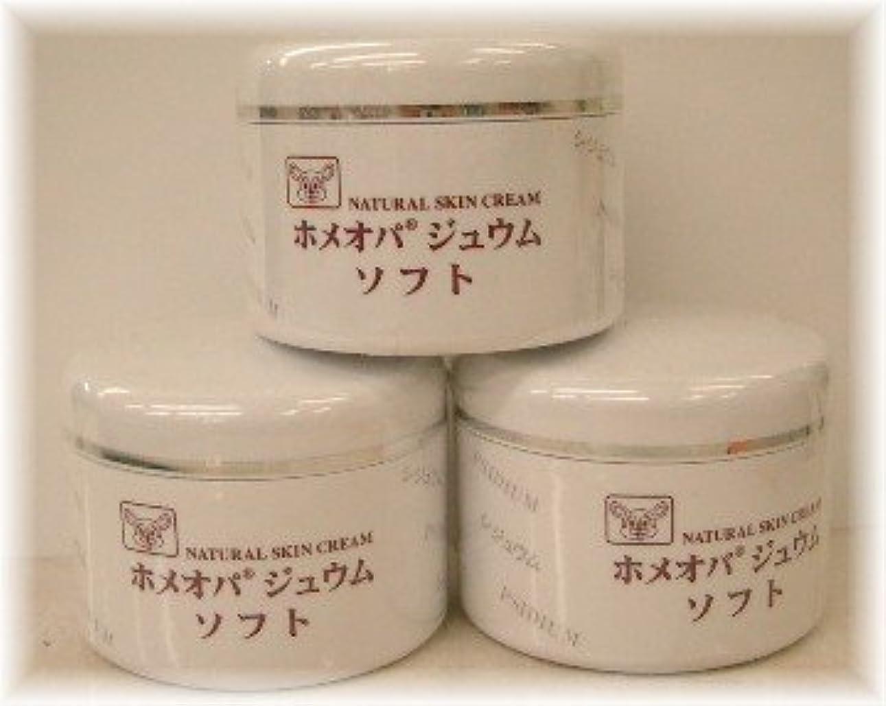 ギャング興奮する抵抗力があるホメオパジュウム スキンケア商品3点¥10500クリームソフトx3個
