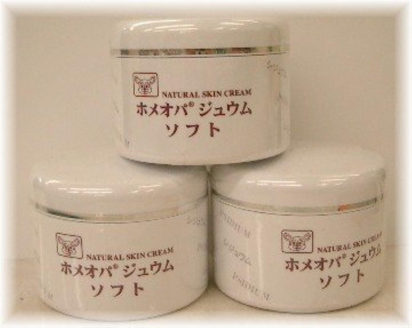 請求可能病者実施するホメオパジュウム スキンケア商品3点¥10500クリームソフトx3個