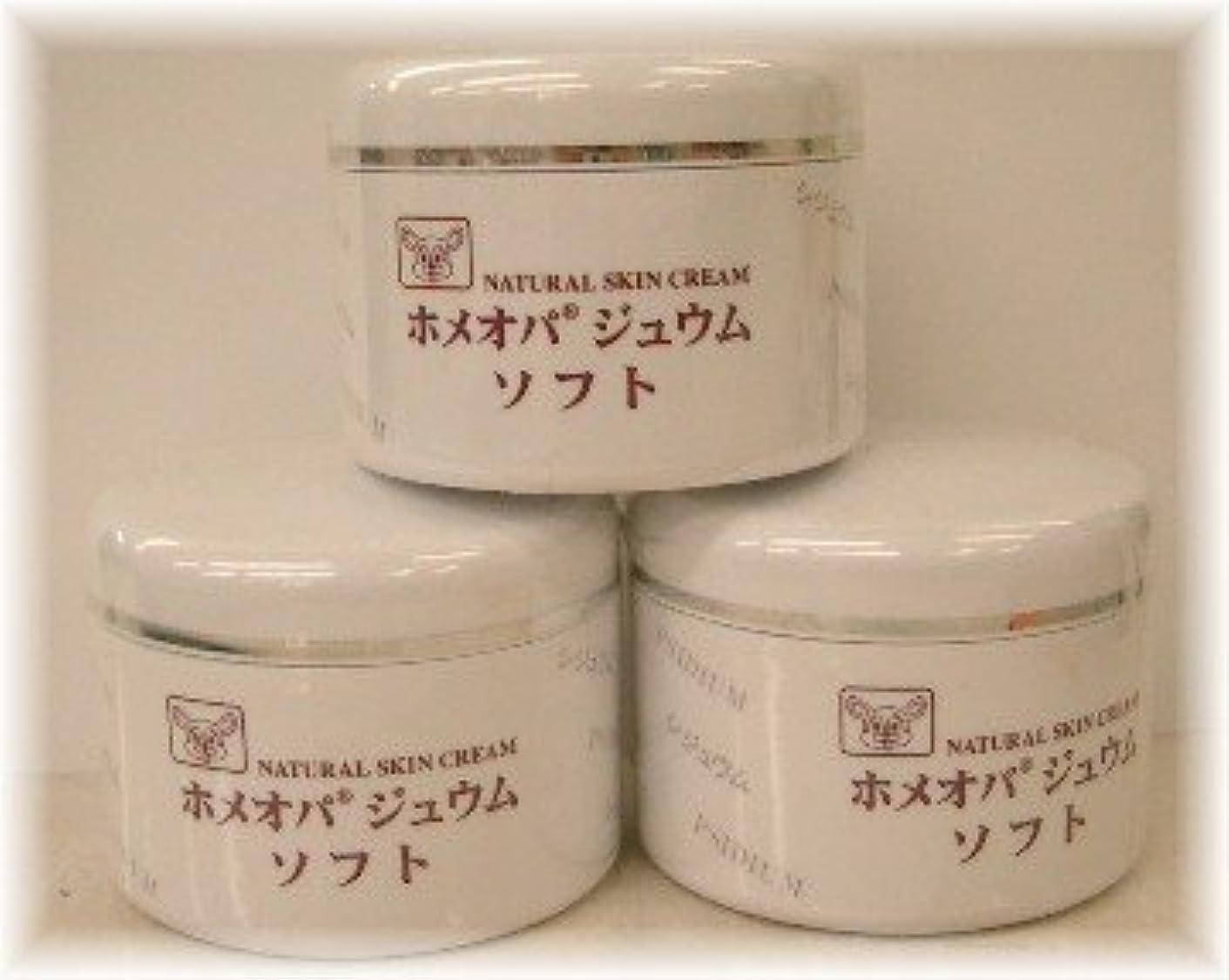 オリエンテーションセクション叫び声ホメオパジュウム スキンケア商品3点¥10500クリームソフトx3個