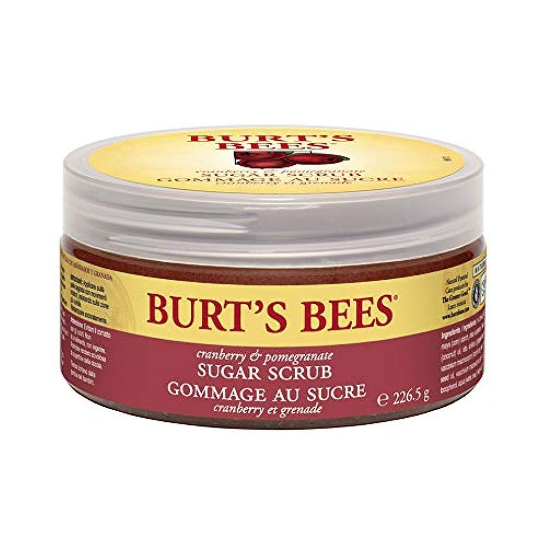 アレンジ効率的にスノーケルバーツビーズ (Burt's Bees) C&P シュガースクラブ 225g