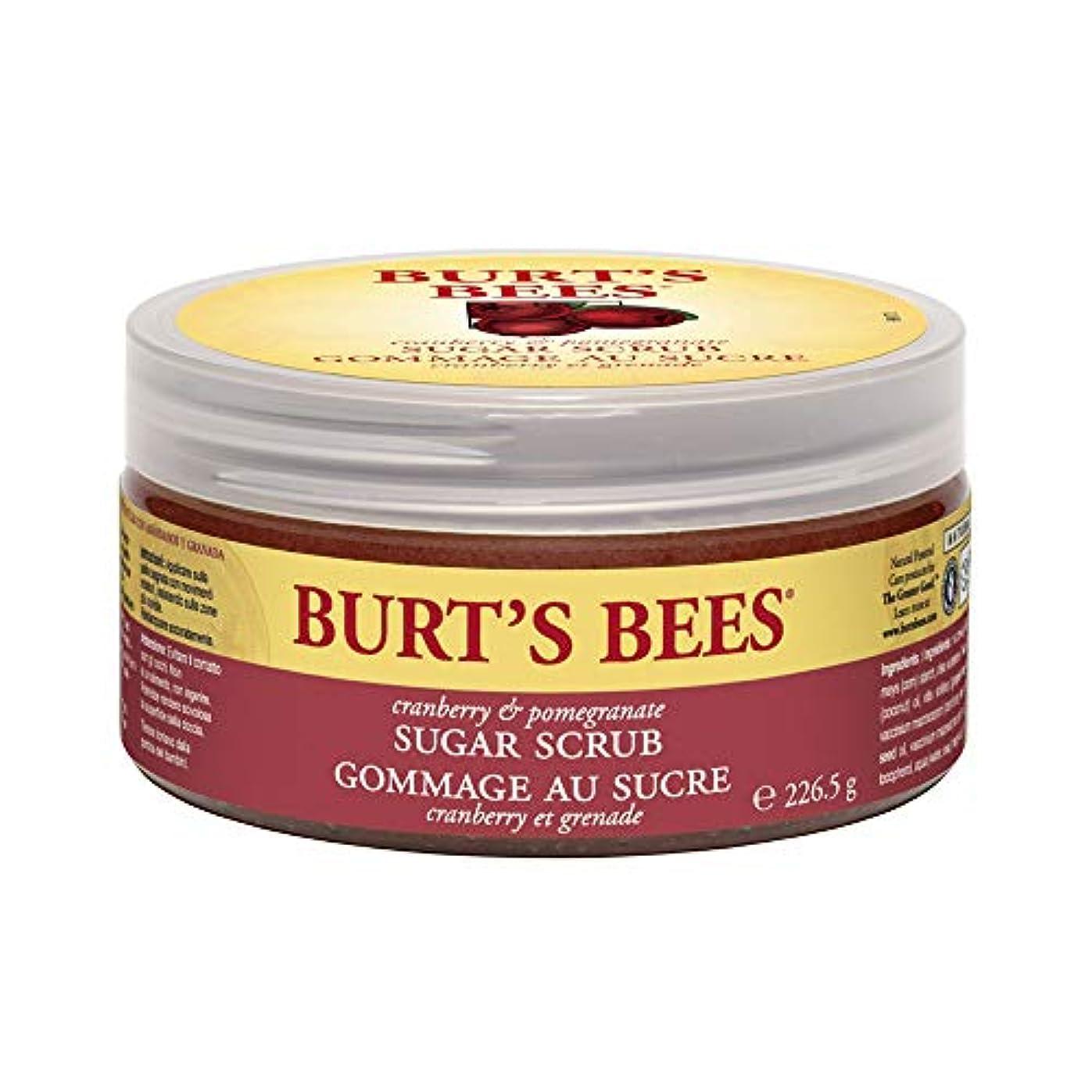 多年生花火美徳バーツビーズ (Burt's Bees) C&P シュガースクラブ 225g