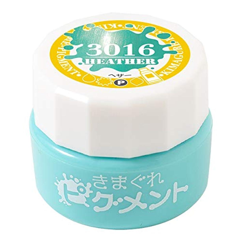 菊メンター提供Bettygel きまぐれピグメント ヘザー QYJ-3016 4g