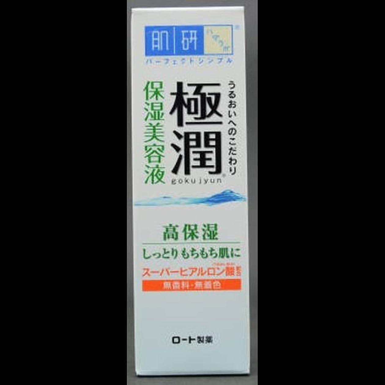 在庫加害者到着する【まとめ買い】肌研 極潤 ヒアルロン美容液 30g ×2セット