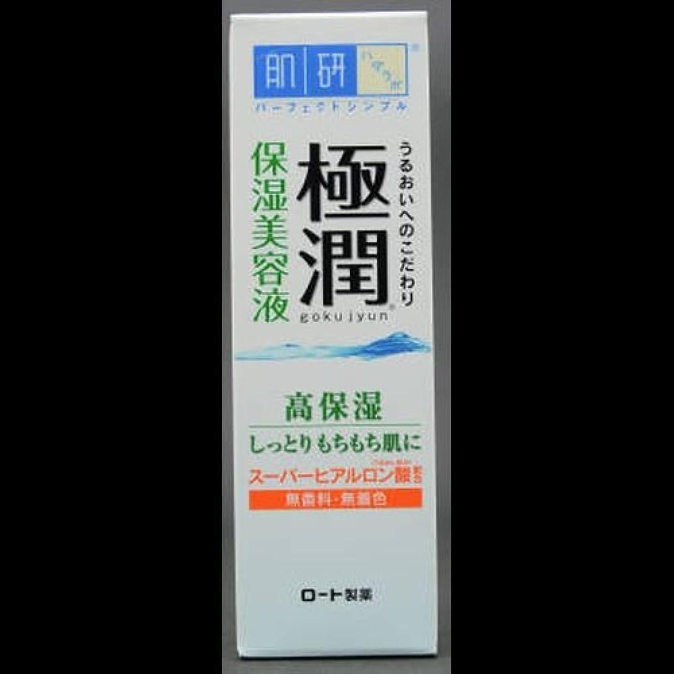 【まとめ買い】肌研 極潤 ヒアルロン美容液 30g ×2セット