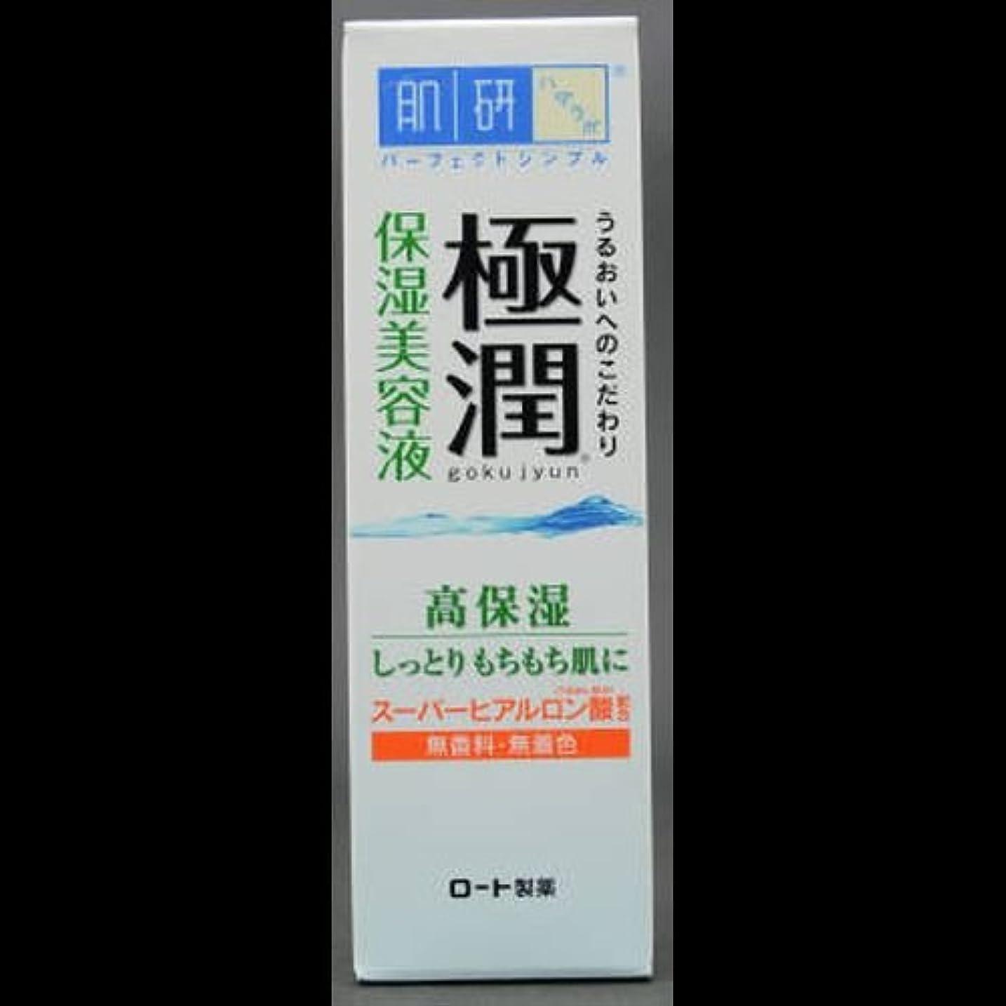 スマイル不道徳霜【まとめ買い】肌研 極潤 ヒアルロン美容液 30g ×2セット