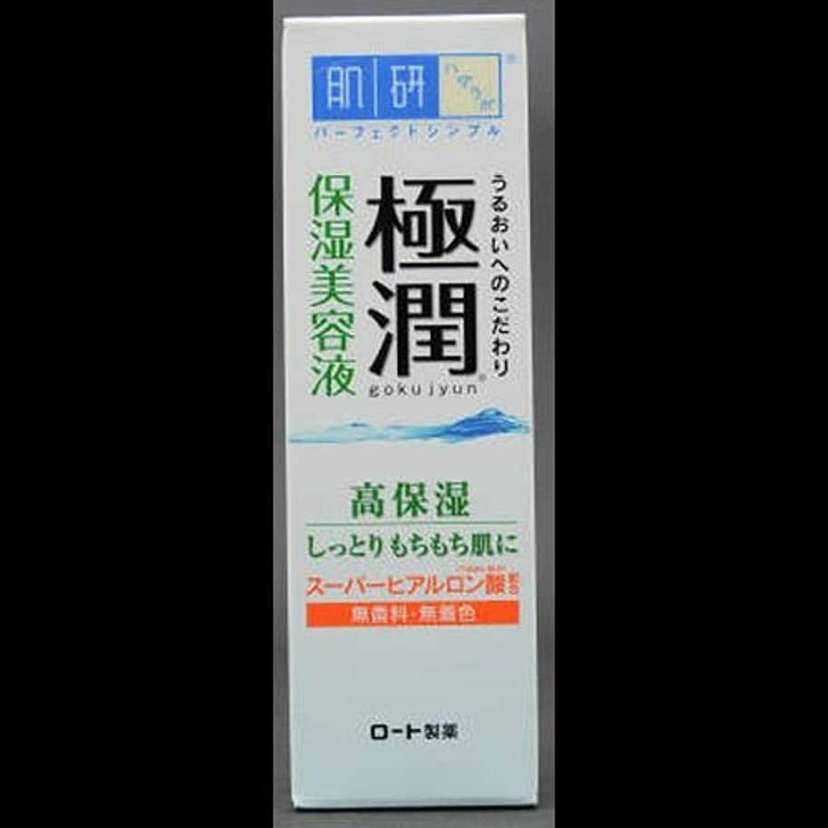汚れたエキスパート飼いならす【まとめ買い】肌研 極潤 ヒアルロン美容液 30g ×2セット