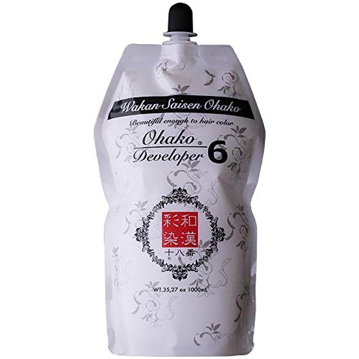照らす厚い触覚日本グランデックス 和漢彩染 十八番 デベロッパー 1000g(業務用) 全2種 6%