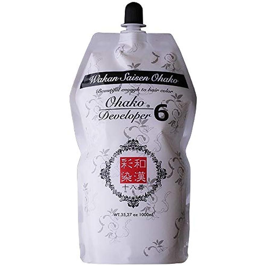 名前で用心に対応日本グランデックス 和漢彩染 十八番 デベロッパー 1000g(業務用) 全2種 6%