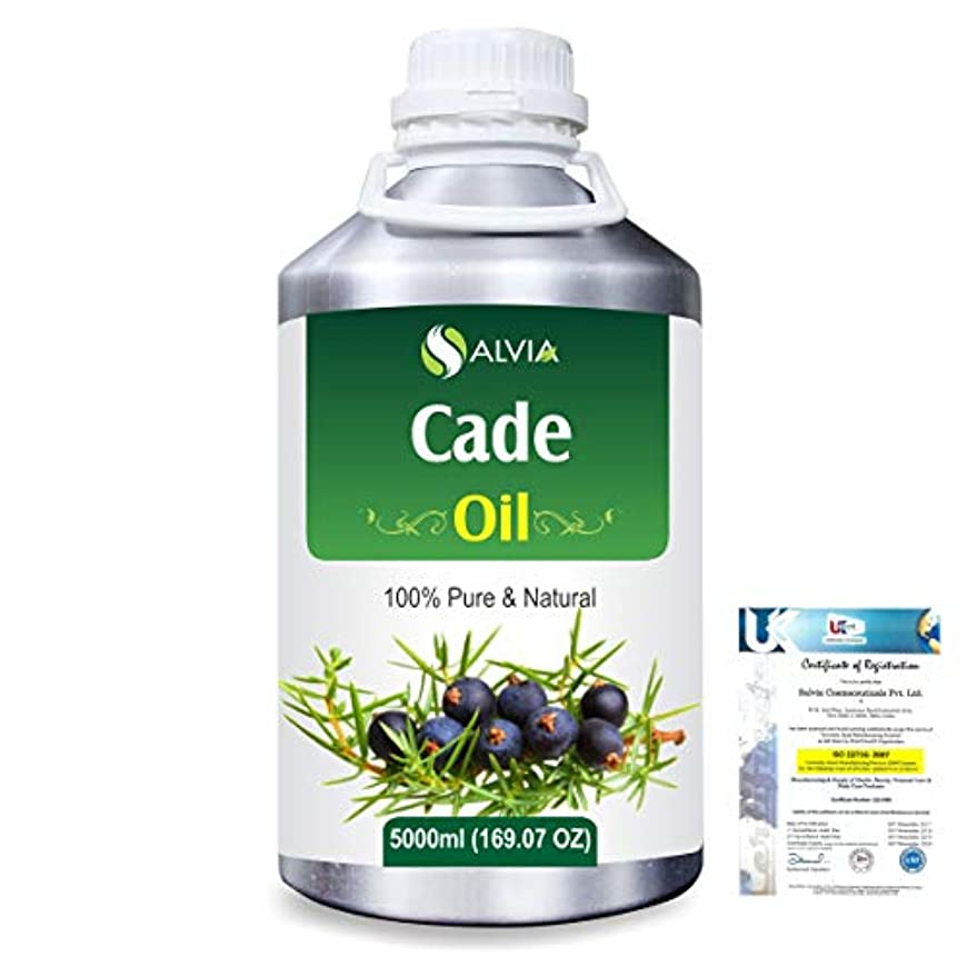 両方壮大なエコーCade (Juniperus oxycedrus) 100% Natural Pure Essential Oil 5000ml/169fl.oz.