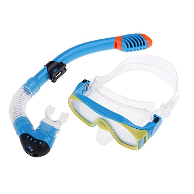 Homyl 子供 スノーケリング 防曇 ダイビングマスク ゴーグル 眼鏡呼吸チューブ  全2色