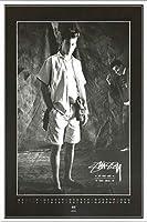 ポスター ステューシー ステューシー20th Anniversary プリント05 額装品 アルミ製ベーシックフレーム