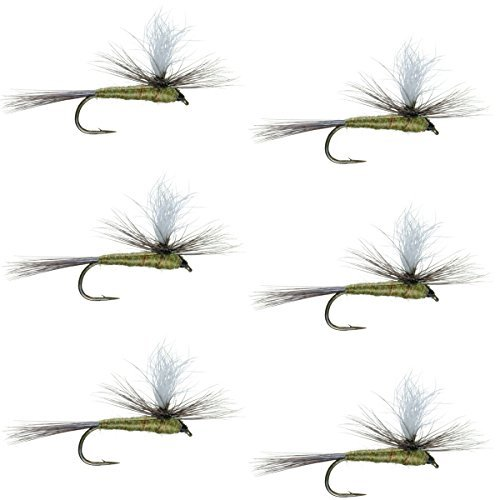 The Fly Fishing PlaceパラシュートブルーWingedオリーブBWOクラシックTrout Dry Fly Fishing Flies–セットof 6Fliesサイズ16