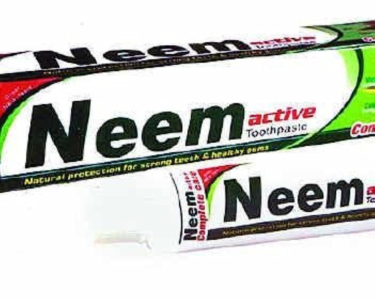 リクルート抵抗不十分なNeem Active Herbal Toothpaste 125g - Natural Protection for Strong Teeth & Healthy Gums by Crazee Deal