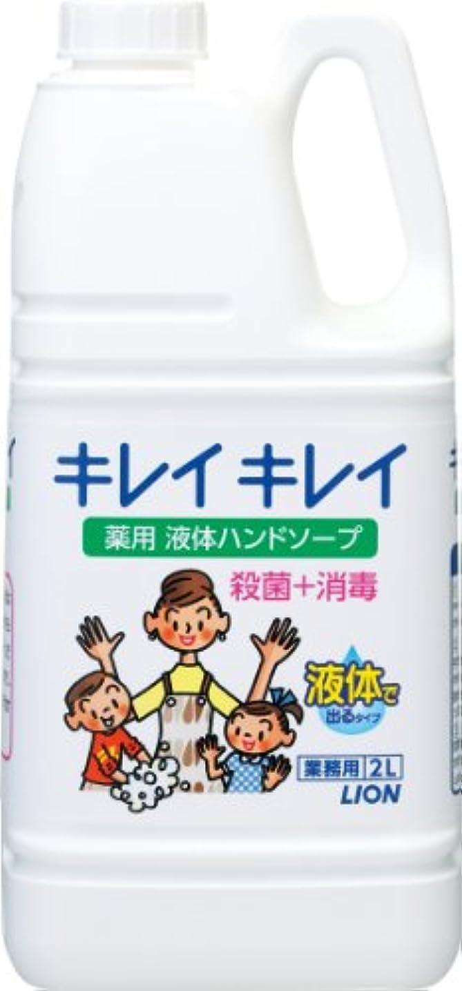 旋回霜調停する【業務用 大容量】キレイキレイ 薬用 ハンドソープ 2L(医薬部外品)
