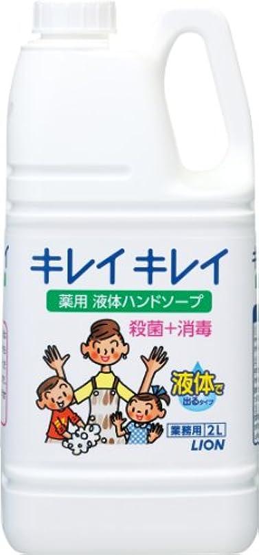 十代の若者たち放映構成員【業務用 大容量】キレイキレイ 薬用 ハンドソープ 2L(医薬部外品)