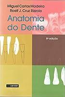 Anatomia Do Dente