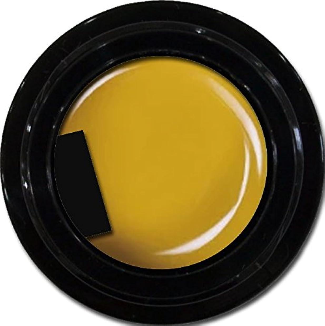 スカーフ疑い者不透明なカラージェル enchant color gel M605 Cameron3g/ マットカラージェル M605キャメロン 3グラム