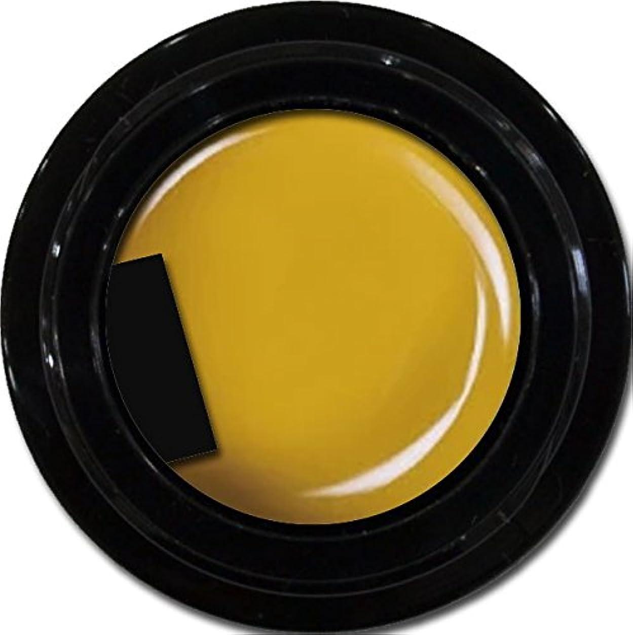 ロゴ強制的剛性カラージェル enchant color gel M605 Cameron3g/ マットカラージェル M605キャメロン 3グラム