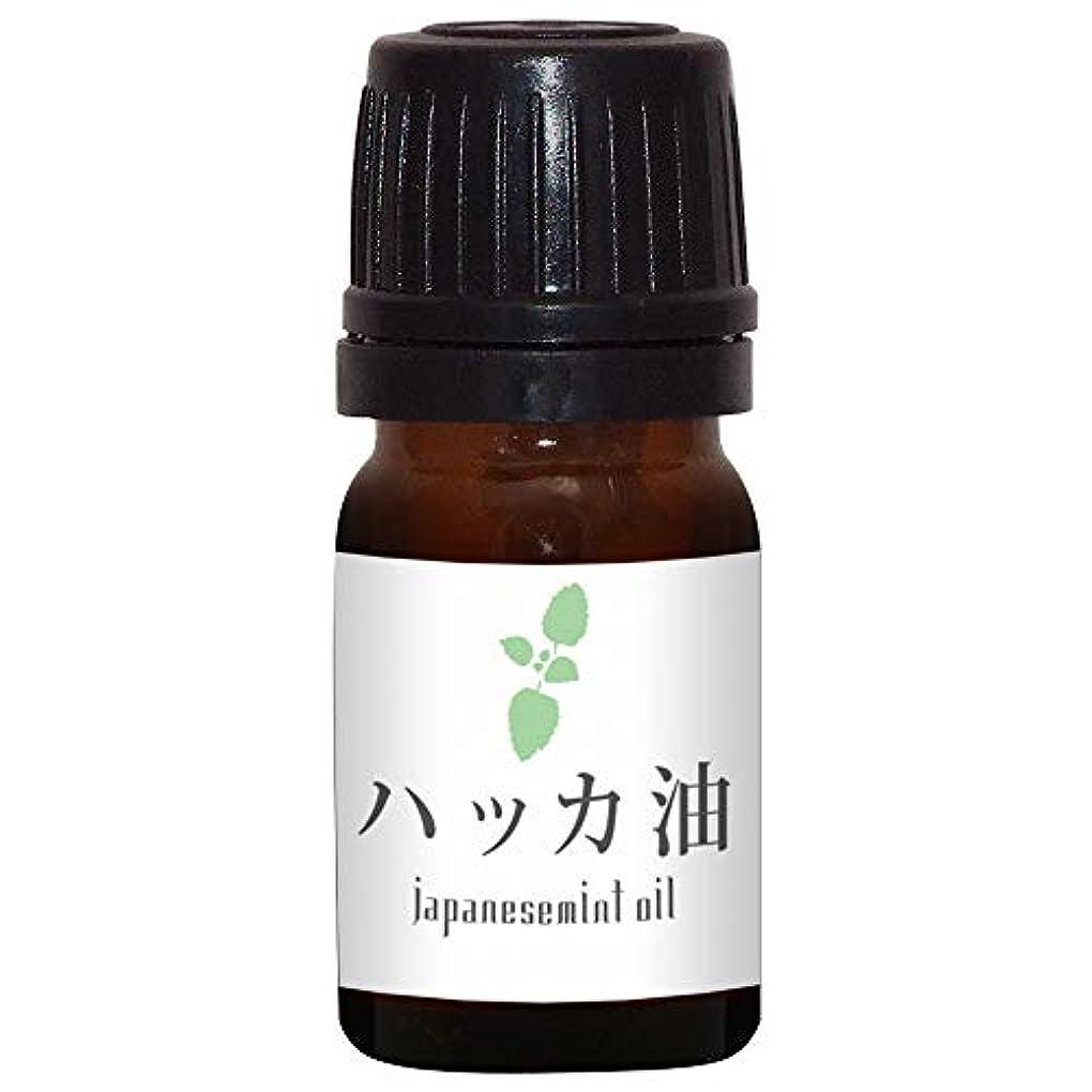 ペンダントきしむ連合ガレージゼロ ハッカ油 (5ml)