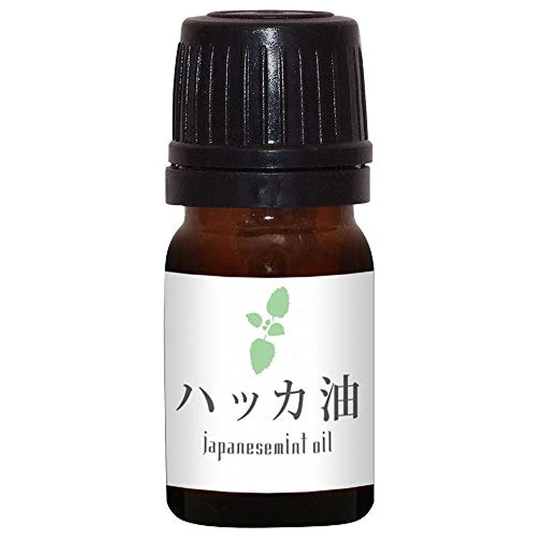 外交官木間違いなくガレージゼロ ハッカ油 (5ml)