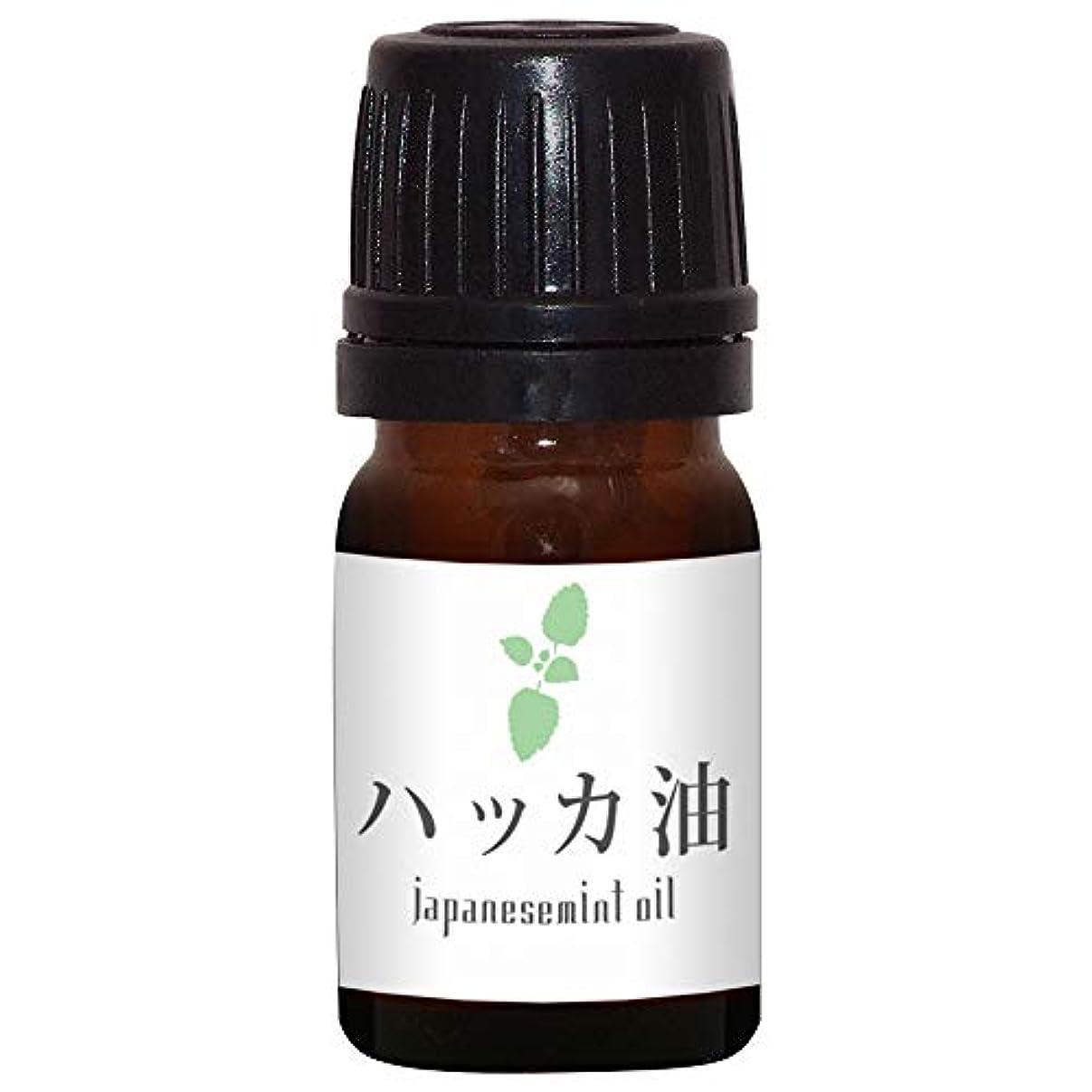 枯渇する苦悩有望ガレージゼロ ハッカ油 (5ml)