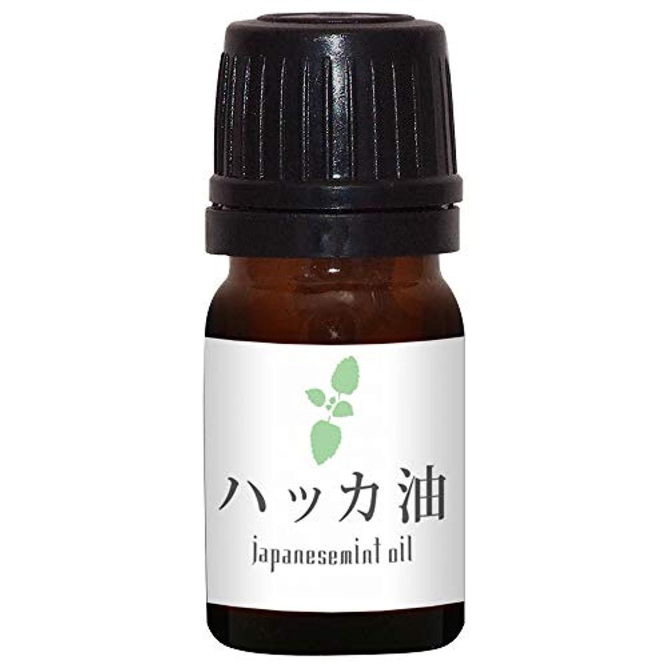 累積ヒントマネージャーガレージゼロ ハッカ油 (5ml)