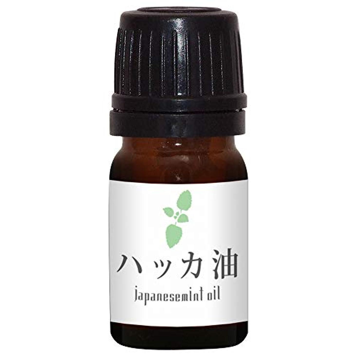 スケルトン筋肉の権威ガレージゼロ ハッカ油 (5ml)