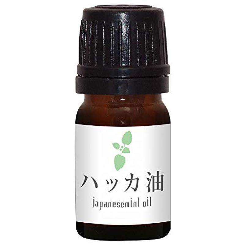 吸収粒子金額ガレージゼロ ハッカ油 (5ml)