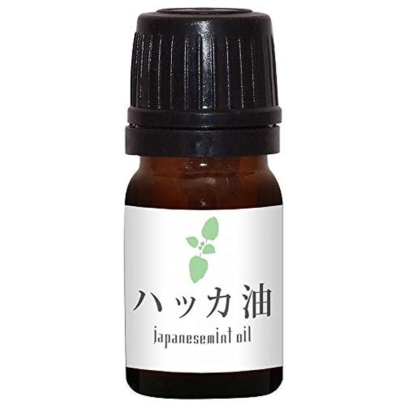 吐くとんでもない食堂ガレージゼロ ハッカ油 (5ml)