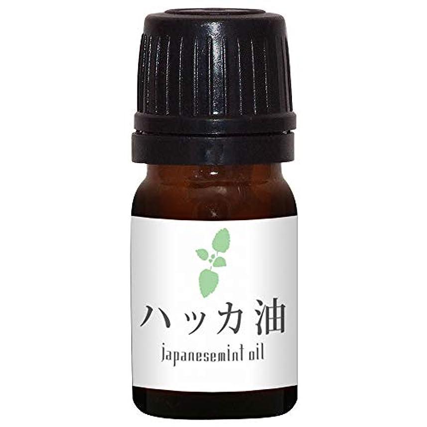 樹木せせらぎ拒否ガレージゼロ ハッカ油 (5ml)