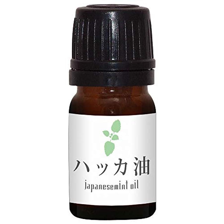 ラベル膨らみ誓約ガレージゼロ ハッカ油 (5ml)