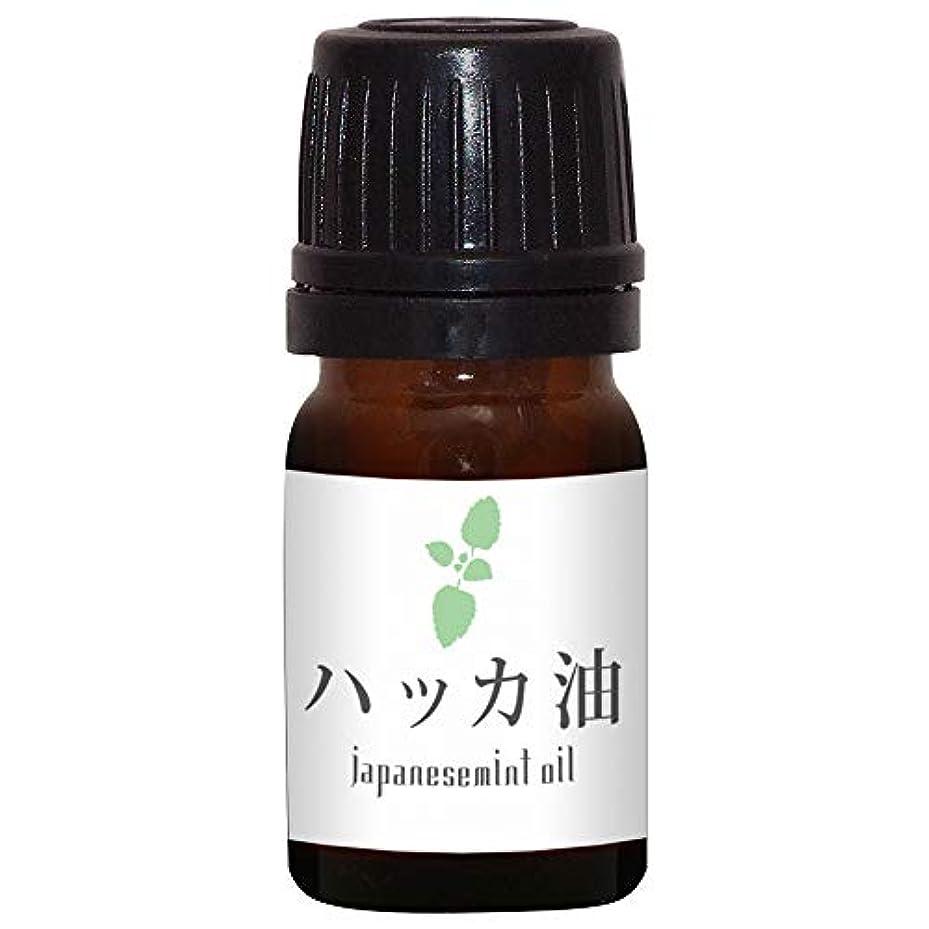 基本的なラフト応答ガレージゼロ ハッカ油 (5ml)