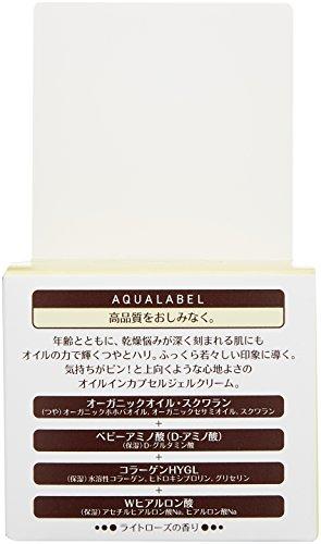 アクアレーベル スペシャルジェルクリーム (オイルイン) エイジングケアタイプオールインワン 90g