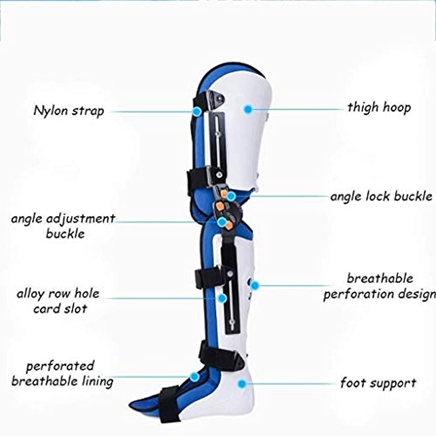 新しい意味オーナメント沼地膝ブレースヒンジ付きヒンジスタビライザー膝関節サポート装具靭帯ケア膝ブレースプロテクター関節炎、術後、メニスカスティア、ACL、MCL、PCL (Color : As Picture, Size : Right)