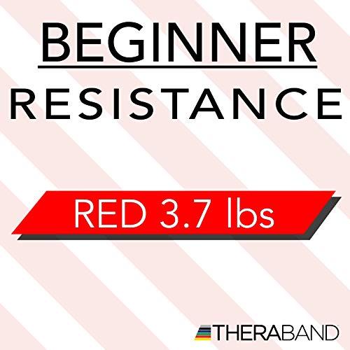 『TheraBand セラバンド 赤 レッド ミディアム (強度:0) 標準サイズ(幅約 12.5cm × 長さ 5.5 m)』の9枚目の画像