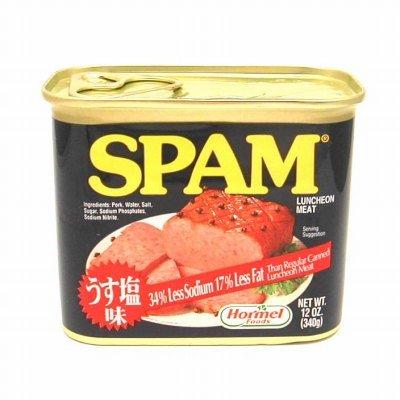 スパム ( SPAM )