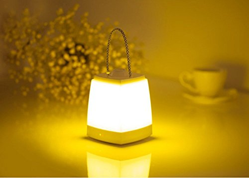 Woolkom LED小夜灯 ベッドサイトランプ 多功能LED移動ライト 内蔵1600MA容量 明るい省エネ灯 USB充電LEDライト 暖光