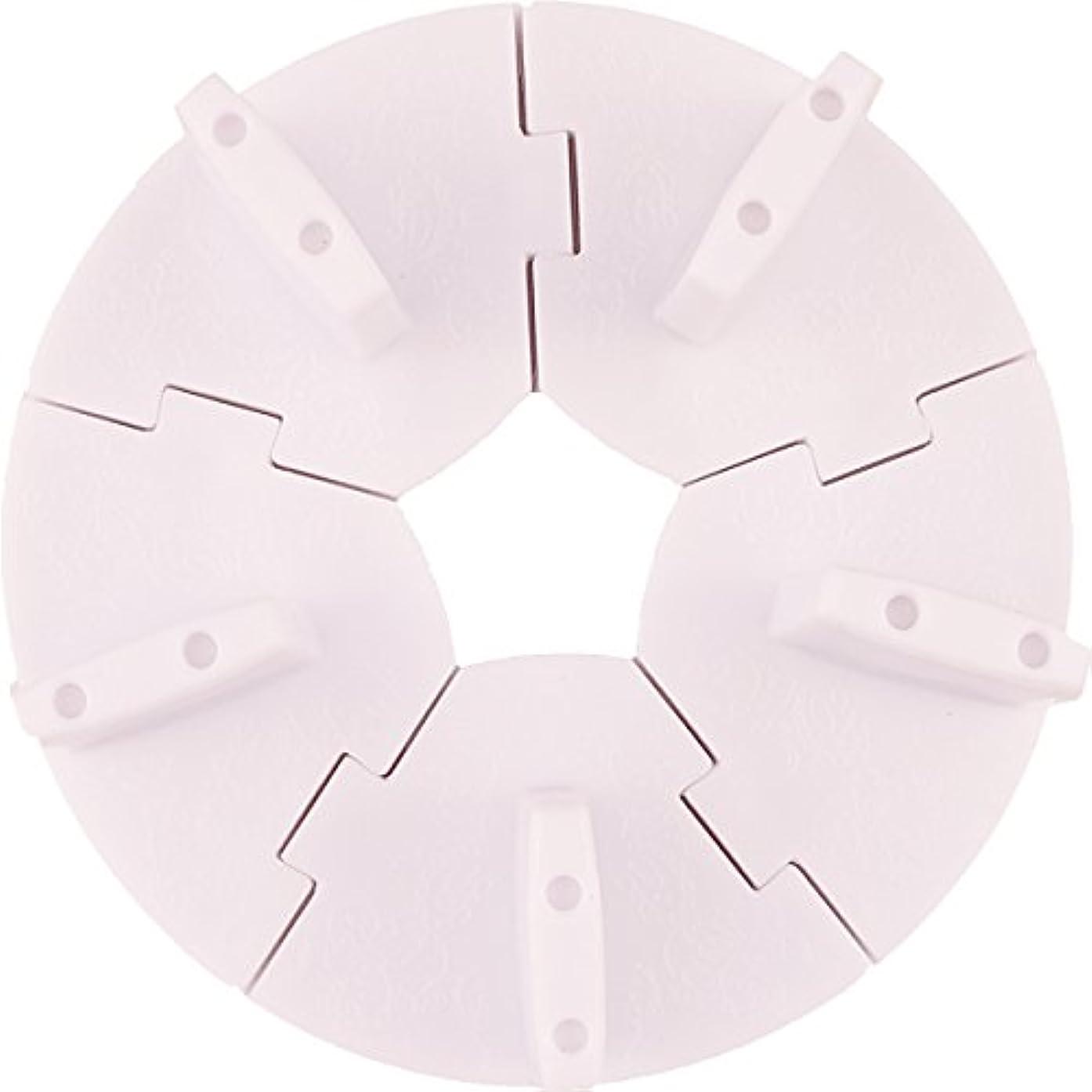 クラシックベース農業のネイル チップスタンド 固定チップ5個付き (ホワイト)