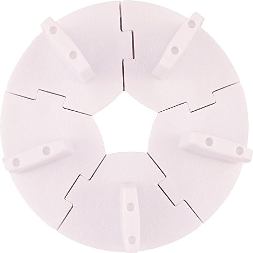 暴力的な隔離現れるネイル チップスタンド 固定チップ5個付き (ホワイト)