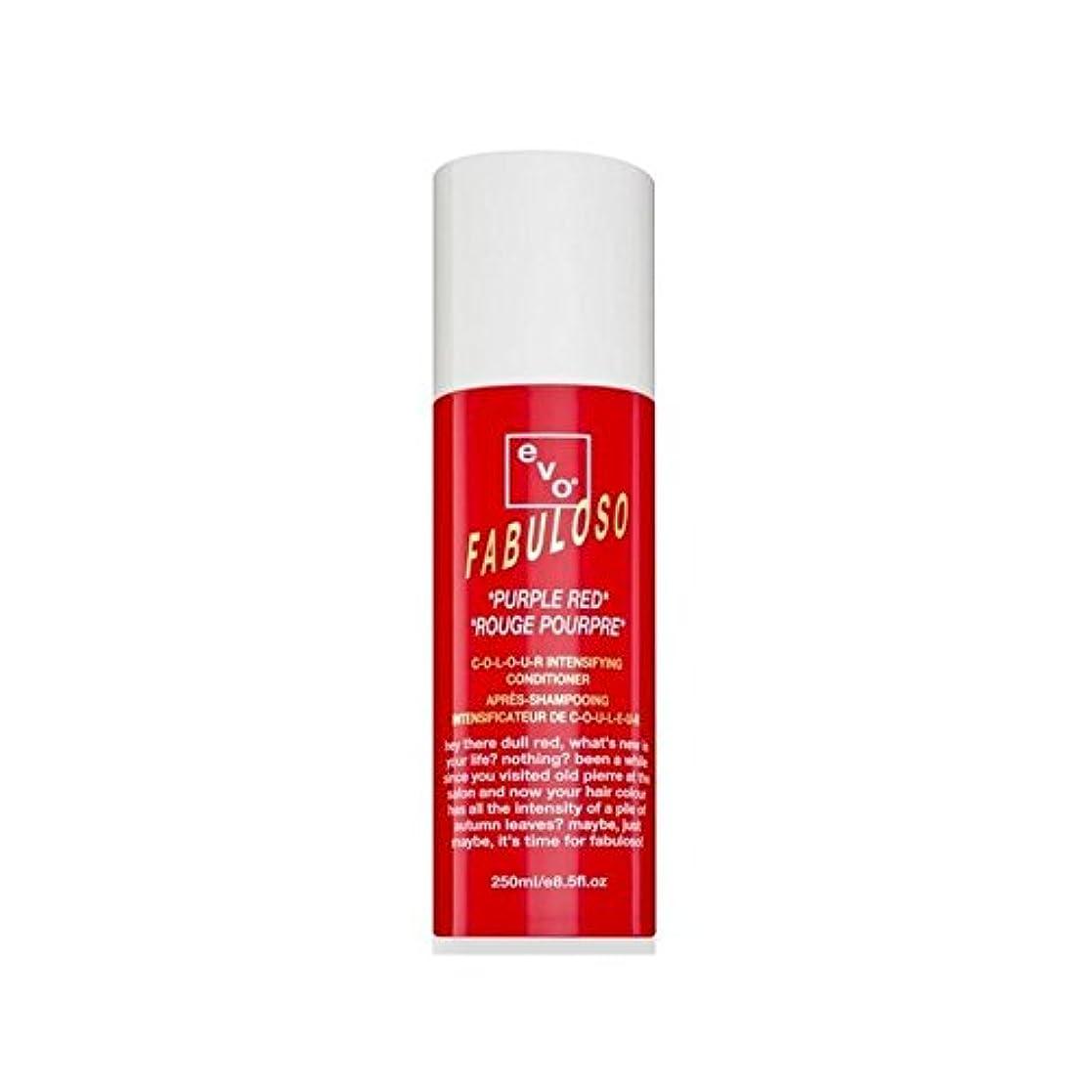 気まぐれな財産ディレイコンディショナー赤紫色(250ミリリットル)を強化 色 x2 - Evo Fabuloso Colour Intensifying Conditioner Purple Red (250ml) (Pack of 2) [...