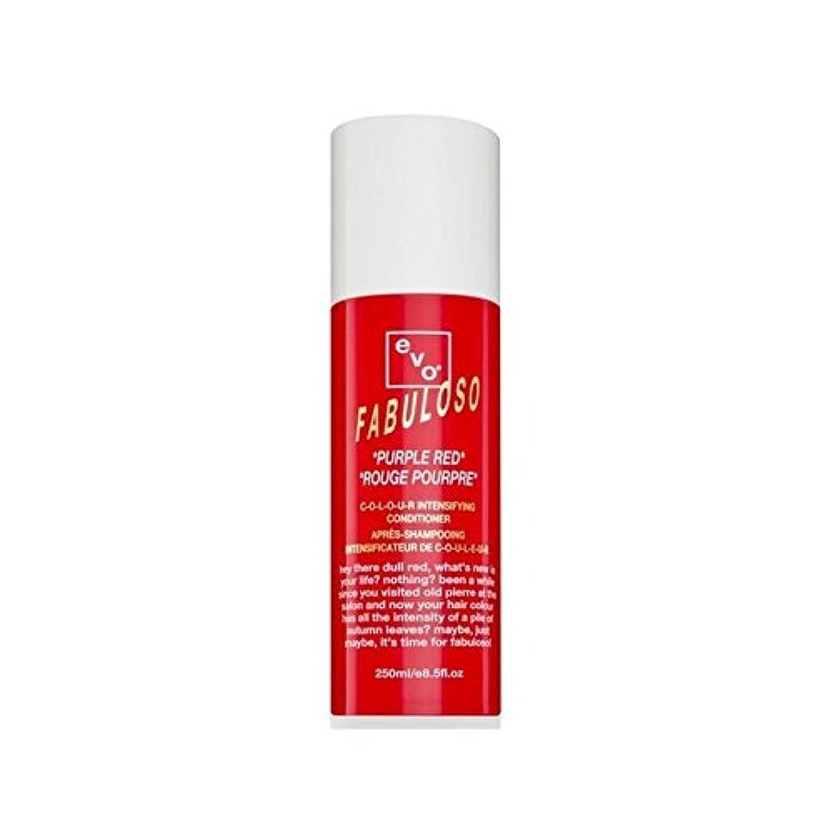 虐待チケット期限コンディショナー赤紫色(250ミリリットル)を強化 色 x4 - Evo Fabuloso Colour Intensifying Conditioner Purple Red (250ml) (Pack of 4) [...
