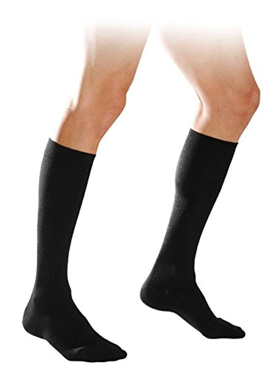 ストリーム機関惨めな【エコノミー症候群予防】男性用 着圧ソックス (L, ブラック)
