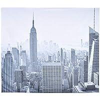 (ライチ) Lychee タペストリー ニューヨーク 風景 ビンテージ 長方形 壁掛け 個性 カバー 背景布 インテリア