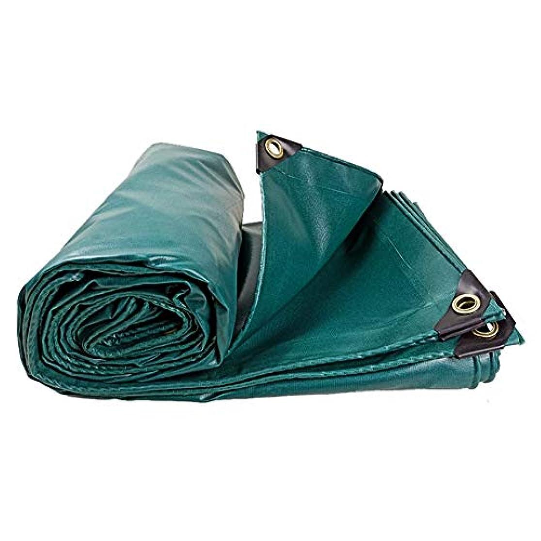 受け入れた耕す幸福ZEMIN オーニング サンシェードテン トタープ シート 両面 防水 ブロッキング熱 暖かくしてください PVC、 マルチサイズ カスタマイズ可能 (色 : 青, サイズ さいず : 2.85x3.85m)